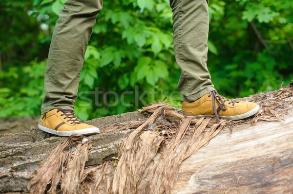 Stock fotó: Férfi · sétál · citromsárga · cipők · fa · erdő