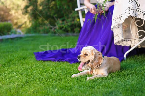 Americano verde gramado mulher caro Foto stock © O_Lypa