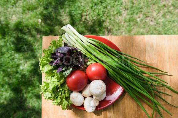 Egészséges étel friss zöldségek tányér asztal piros fa asztal Stock fotó © O_Lypa