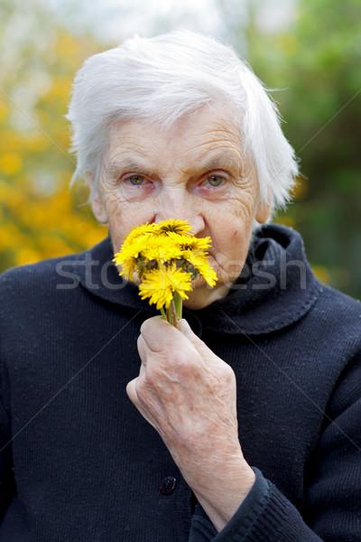 пожилого жизни фотография желтый цветок Сток-фото © ocskaymark