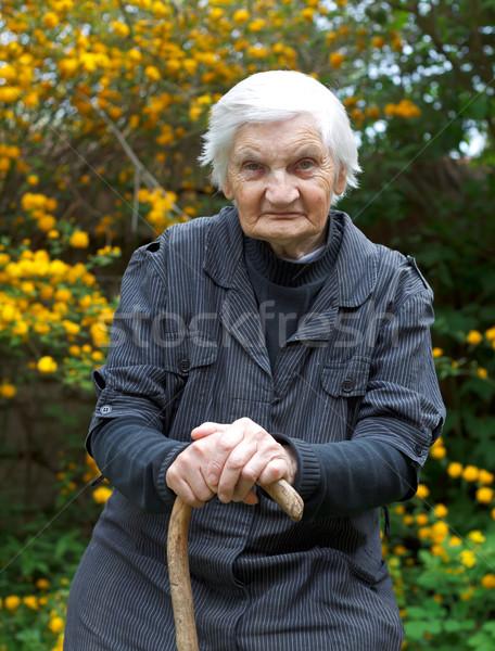 Idoso vida deficientes mulher sessão jardim Foto stock © ocskaymark