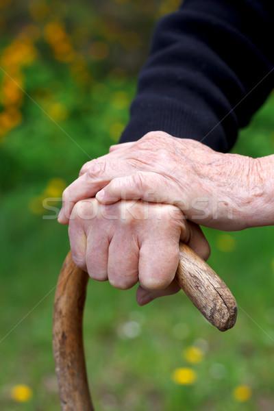 Ráncos kezek közelkép tart sétapálca kéz Stock fotó © ocskaymark