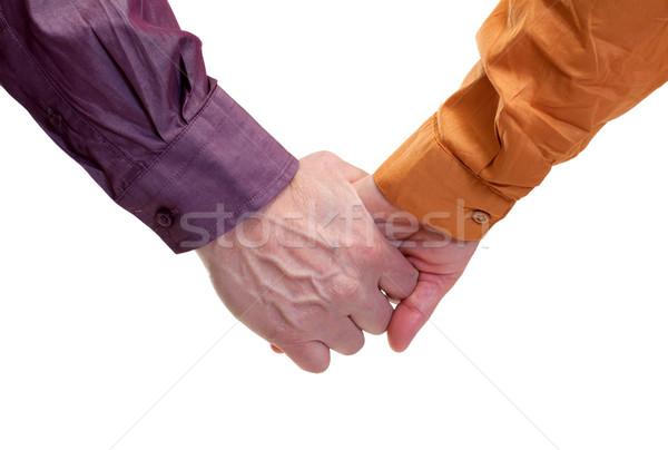 , держась за руки взрослый рук изолированный стороны Сток-фото © ocskaymark