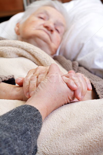 Atendimento domiciliar mulher idoso mãos casa Foto stock © ocskaymark