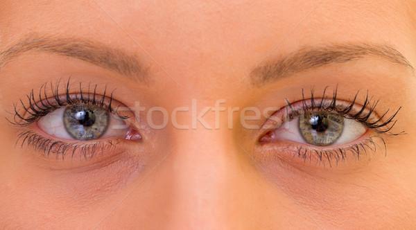 Beautiful eyes Stock photo © ocskaymark