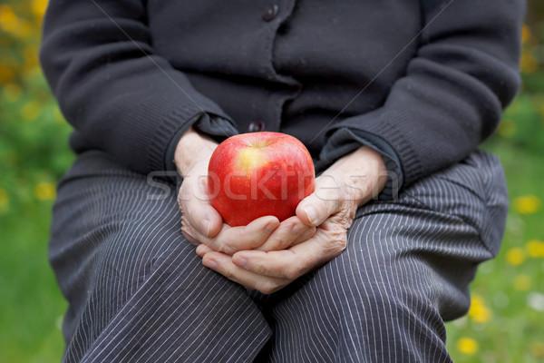 Healthy elderly Stock photo © ocskaymark