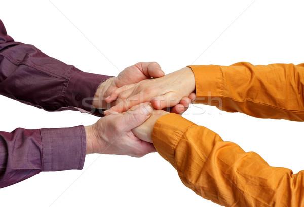 De mãos dadas adulto mãos isolado mão Foto stock © ocskaymark