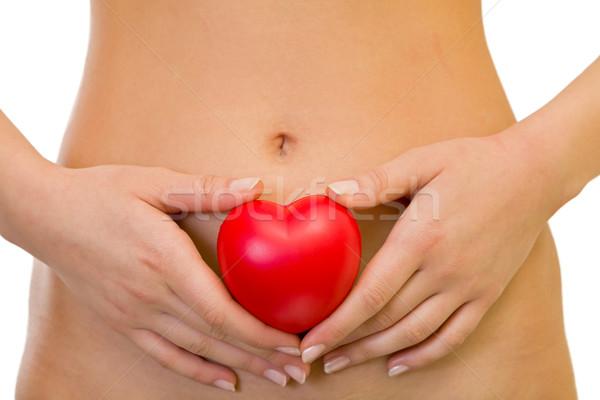 Corpo cuidar bela mulher mão coração Foto stock © ocskaymark