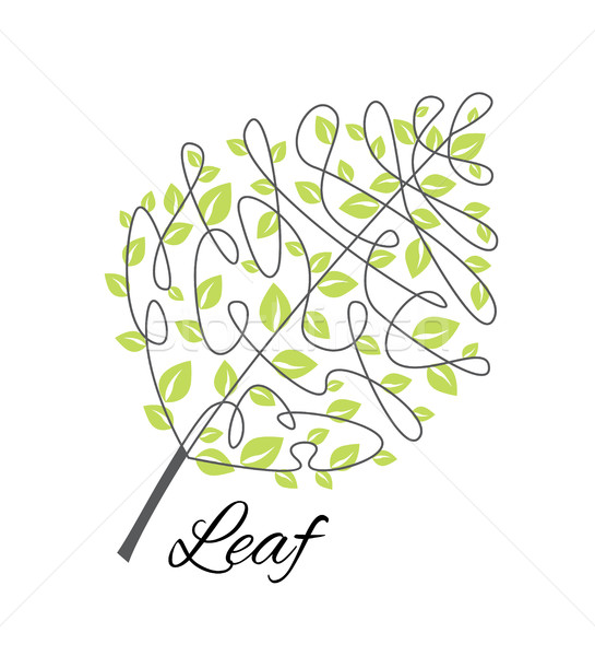 Vector decorative leaf Stock photo © odina222