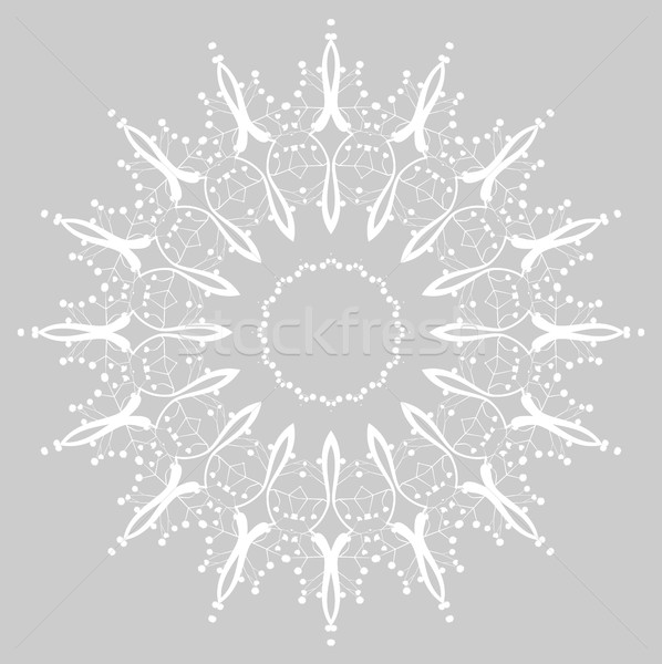 Floral Ornament Pattern Stock photo © odina222