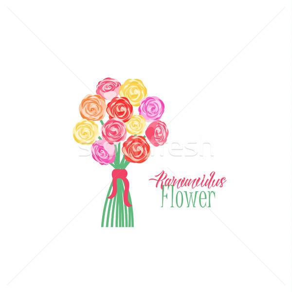 çiçekler çiçek sevmek yaprak doğum günü Stok fotoğraf © odina222