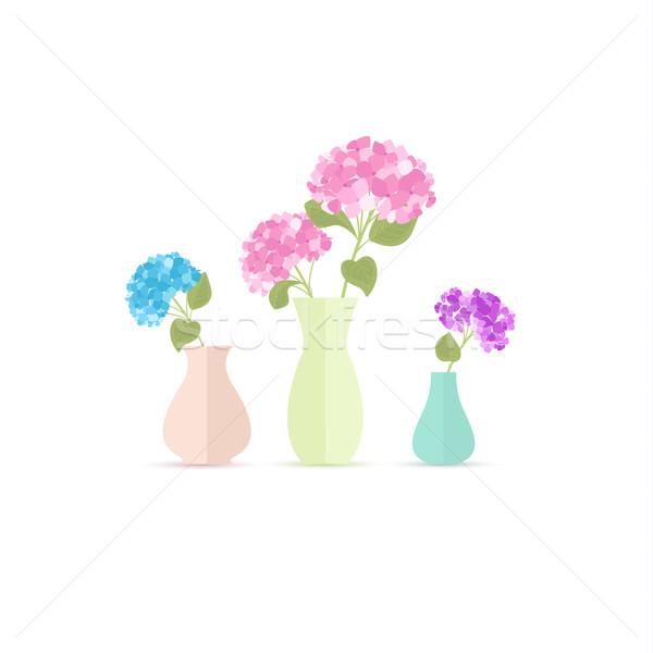 Váza virágok virágváza természet terv kert Stock fotó © odina222