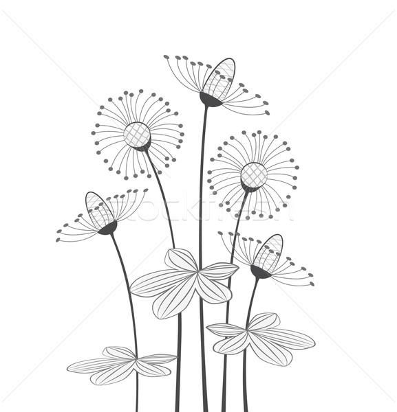 Virágok legelő fehér tavasz fű tájkép Stock fotó © odina222