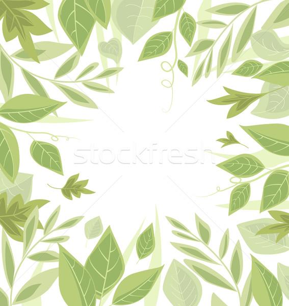 Groene bladeren natuur plaats tekst boom voorjaar Stockfoto © odina222