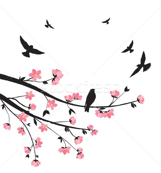 Tavasz sakura virág dekoratív ágak virágok Stock fotó © odina222