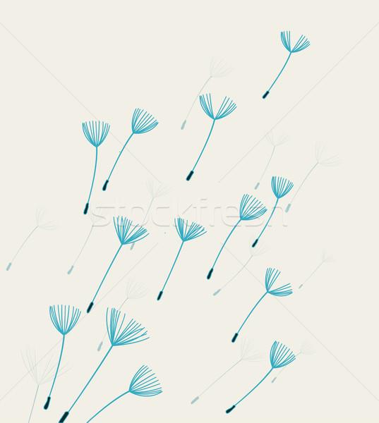 Vector dandelion fluff Stock photo © odina222