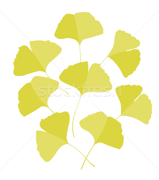 Stockfoto: Bladeren · Geel · blad · najaar · retro · plant