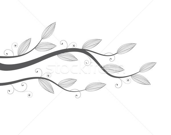 leaves Stock photo © odina222