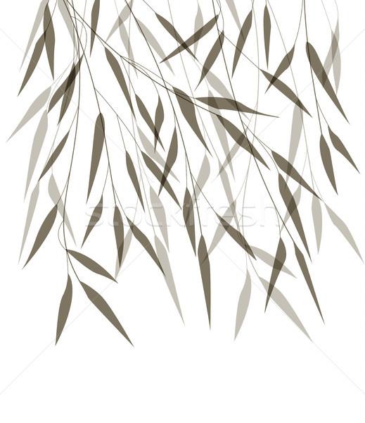 Vecteur bambou laisse noir arbre herbe Photo stock © odina222