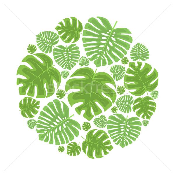 Palm leaf decoration Stock photo © odina222