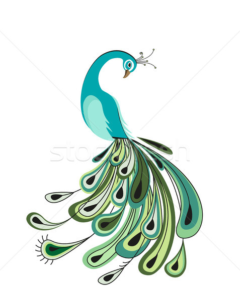 Peacock with colorful feathers Stock photo © odina222