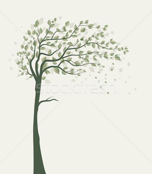 Tree with leaves Stock photo © odina222