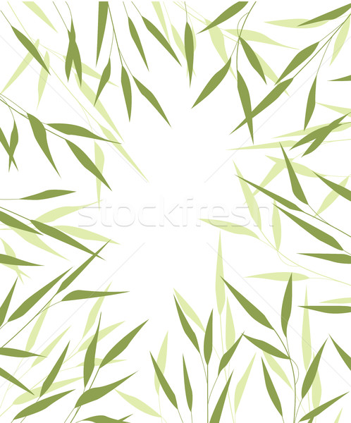 Bamboo green leaves Stock photo © odina222