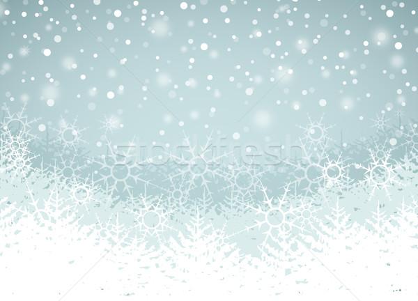 Winter Landscape Stock photo © odina222