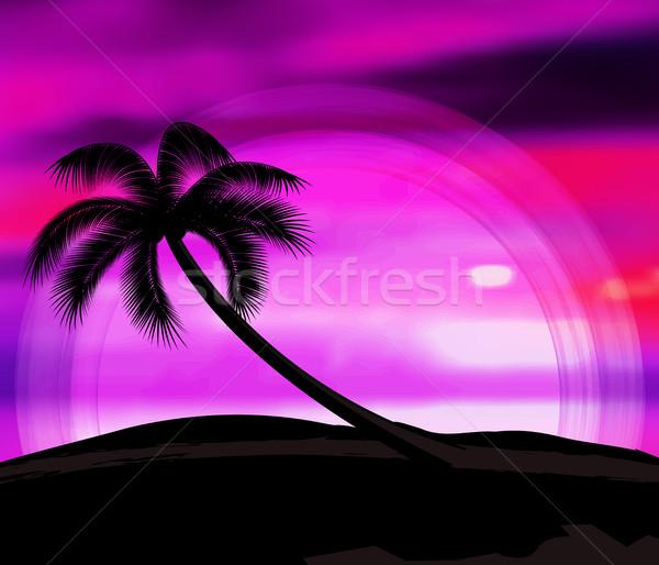 Vector zomervakantie zonsondergang palmbomen strand hemel Stockfoto © odina222