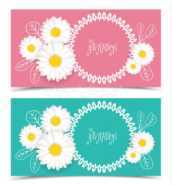Vector wenskaart daisy bloem uitnodiging Stockfoto © odina222