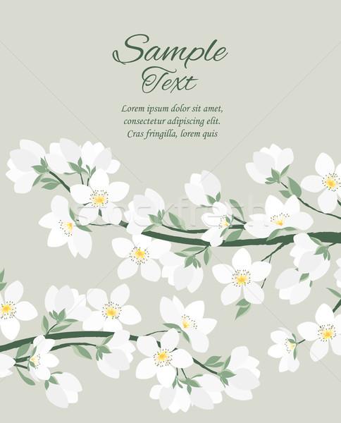 Stock fotó: Vektor · tavasz · virág · dekoratív · ágak · virágok