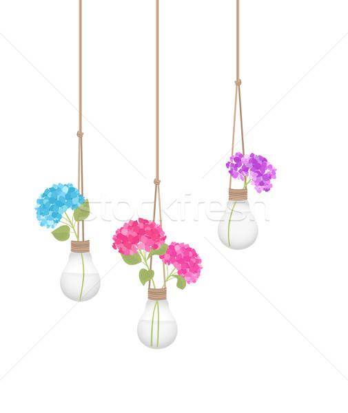 çiçek ampul soyut doğa dizayn Stok fotoğraf © odina222