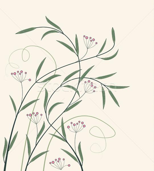 Stock fotó: Vektor · dekoráció · virágok · díszítések · vadvirágok · virágmintás