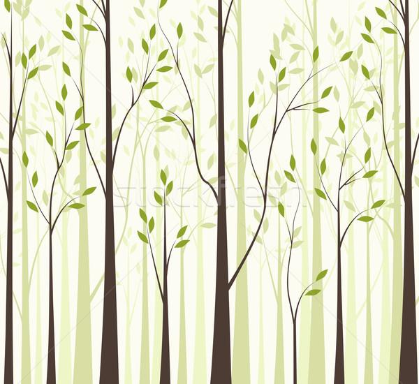 Bomen groene bladeren witte boom voorjaar hout Stockfoto © odina222