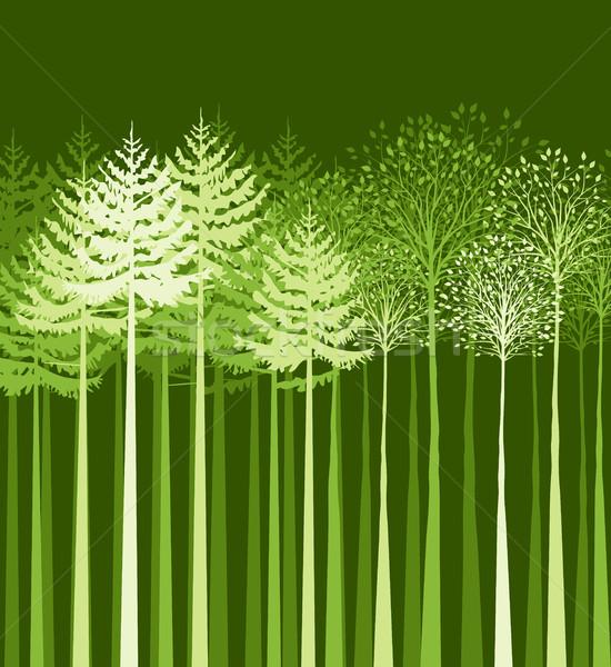風景 木 ベクトル 混合した 森林 ツリー ストックフォト © odina222