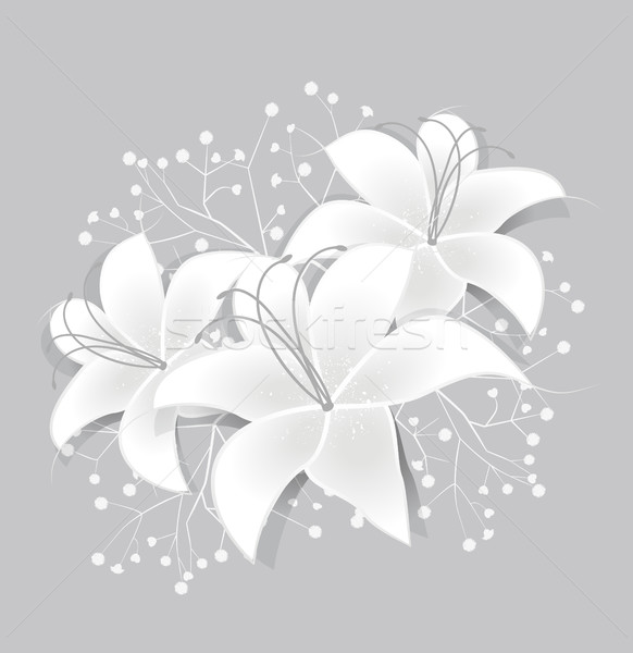 Vector White lilies Stock photo © odina222
