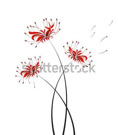 Vector Flower higanbana Stock photo © odina222