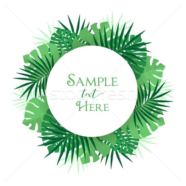 пальмовых листьев украшение экзотический дерево пляж весны Сток-фото © odina222