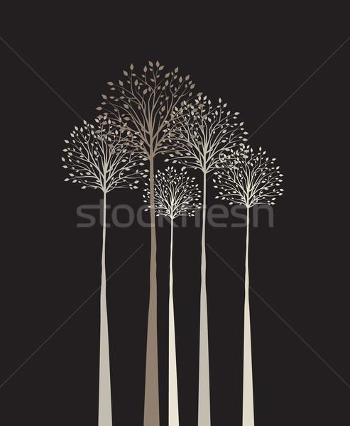 Bomen groep donkere boom bos abstract Stockfoto © odina222