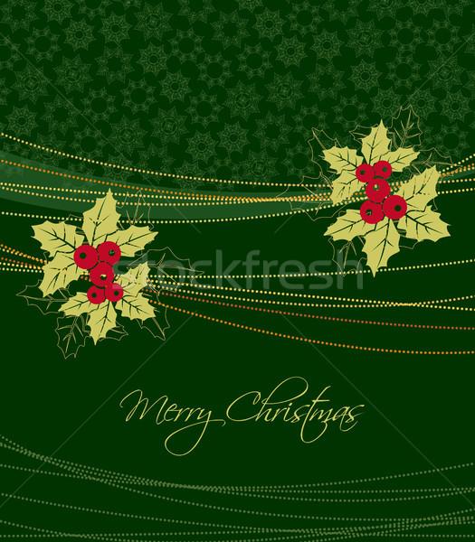 Mistel Natur Design Blatt Schnee Hintergrund Stock foto © odina222