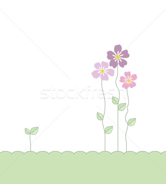 çiçekler yaprakları dekorasyon romantik bahar Stok fotoğraf © odina222
