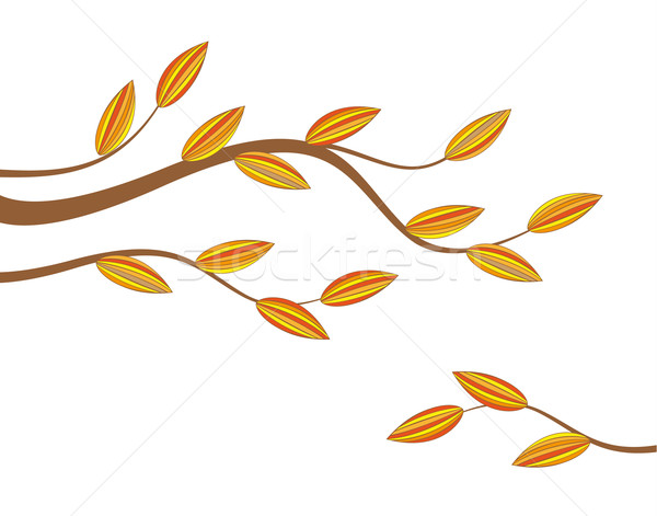 Tak kleurrijk bladeren bos ontwerp Stockfoto © odina222