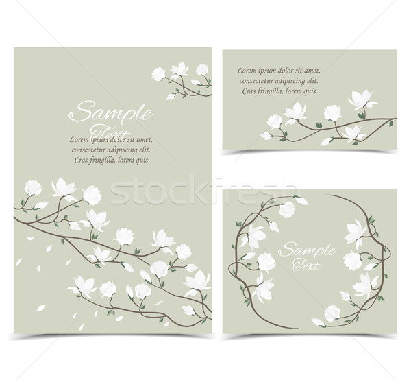 Vecteur magnolia fleurs rose carte Photo stock © odina222