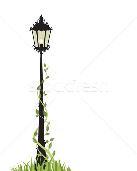 Vektör beyaz sokak bahçe kentsel Stok fotoğraf © odina222