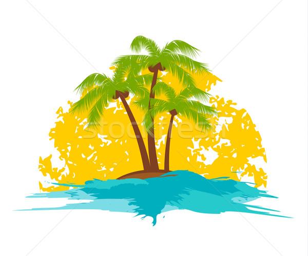 Сток-фото: пальма · острове · солнце · небе · пейзаж · лист