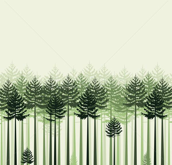 Landschap bomen bos boom voorjaar hout Stockfoto © odina222