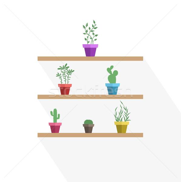 Vector potted plants Stock photo © odina222