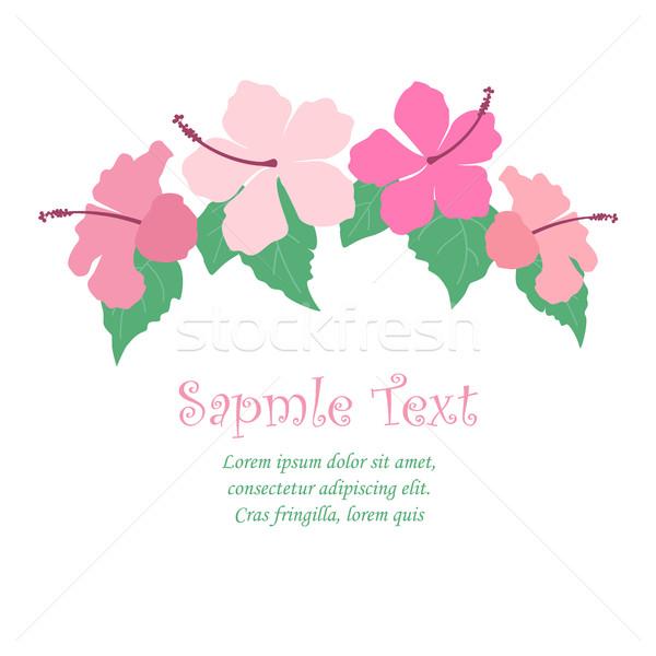 Tropikal çiçekler ebegümeci çiçek parti dizayn Stok fotoğraf © odina222