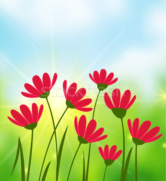 Napos idő virágok égbolt nap természet tájkép Stock fotó © odina222