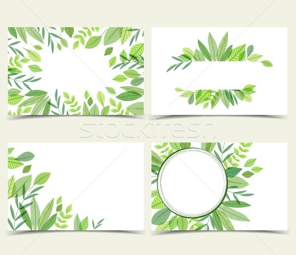 вектора набор природного украшения зеленые листья Сток-фото © odina222